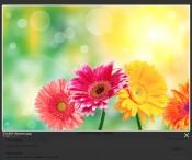 lightbox-overlay.jpg