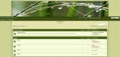 green-style.jpg