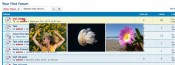 Topic Image Preview