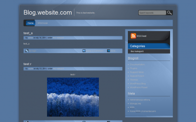 wordpress_proglass.PNG