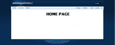 homepageexample.jpg