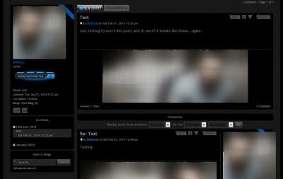 blogcommentview.jpg